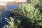 """""""بالصور"""" تلال القمامة ومياه الصرف الصحي تحاصر قرية السنباط بالفيوم ،"""